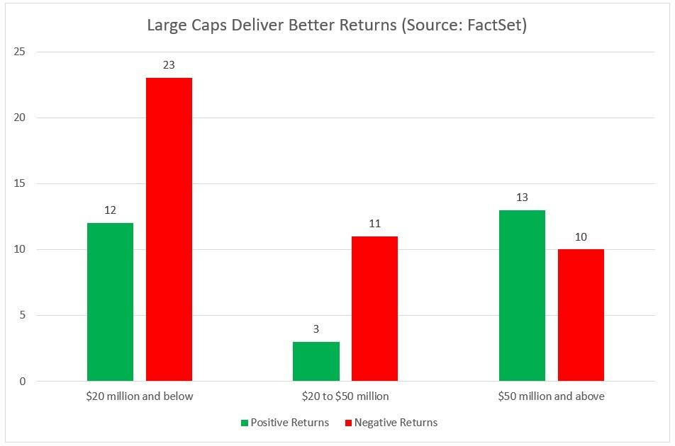 Large Caps Deliver Better Returns