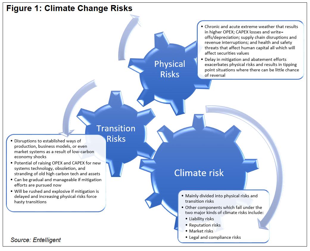 Risk Graphic