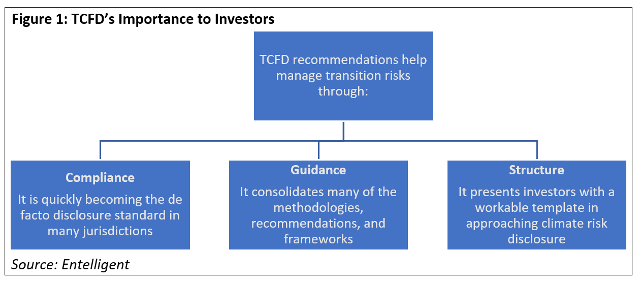 TCFDs Importance to Investors