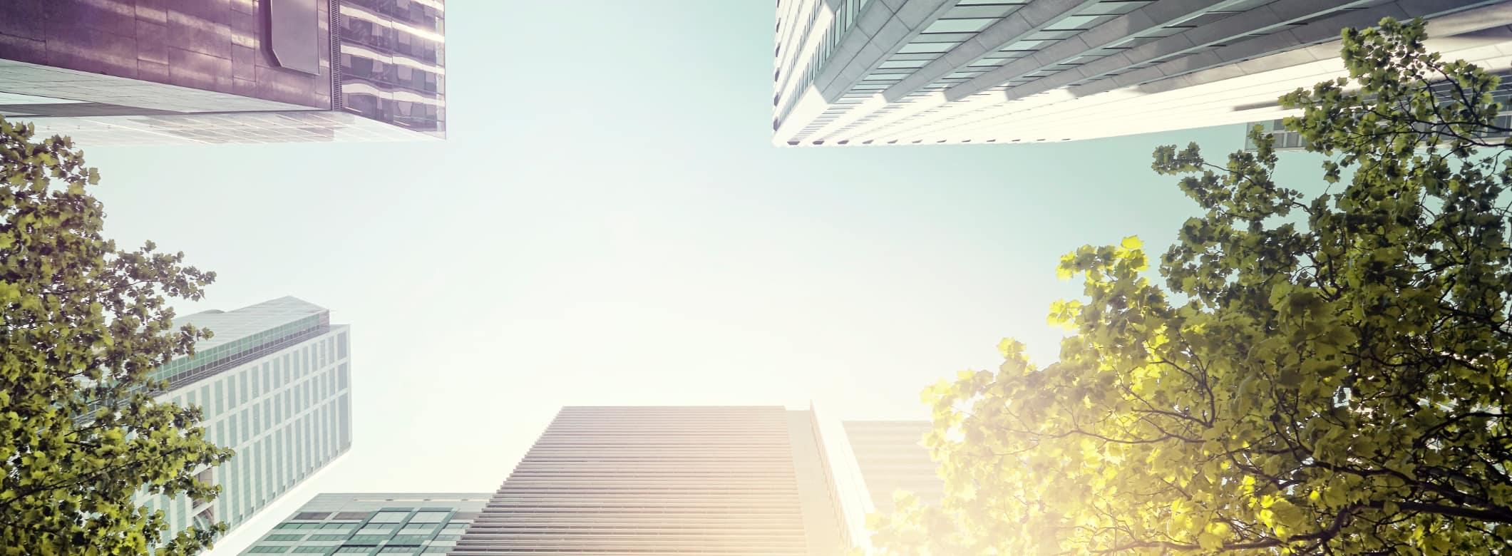 Insight ESG Image 19